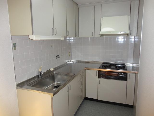 レトロマンションⅣ 202号室のキッチン