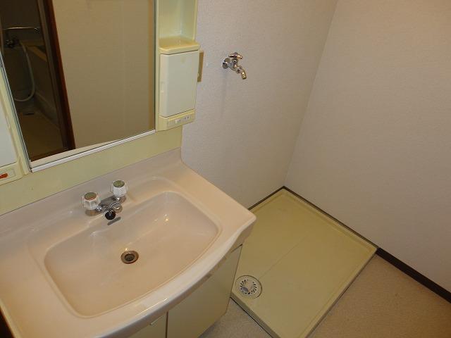 レトロマンションⅣ 202号室の洗面所