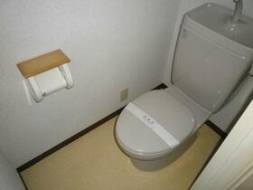 紫光ハイツ 202号室のトイレ