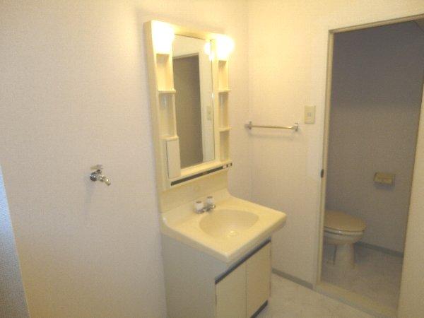 アメニティ45 B105号室の洗面所