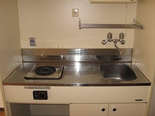 RIN,Sコーポラティヴハウス 203号室のキッチン