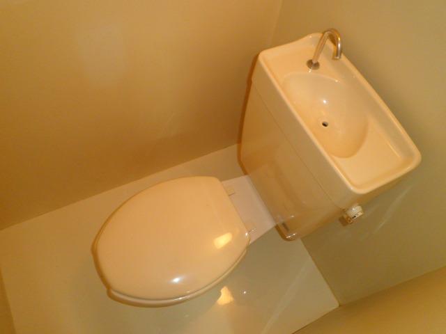 池上コーポ 202号室のトイレ