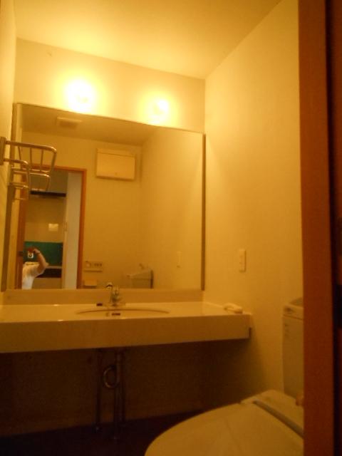 原町田ハウスメント 203号室の洗面所