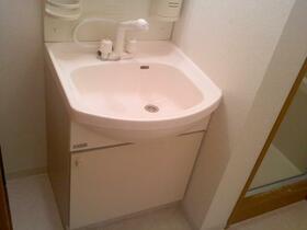 エーデルトノギ 303号室の洗面所