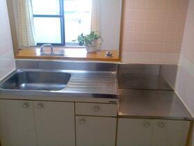 エーデルトノギ 303号室のキッチン