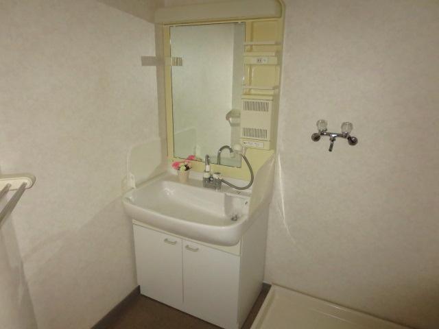 C・ISLAND14 601号室の洗面所