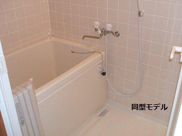 セザンヌ大岩 213号室の風呂