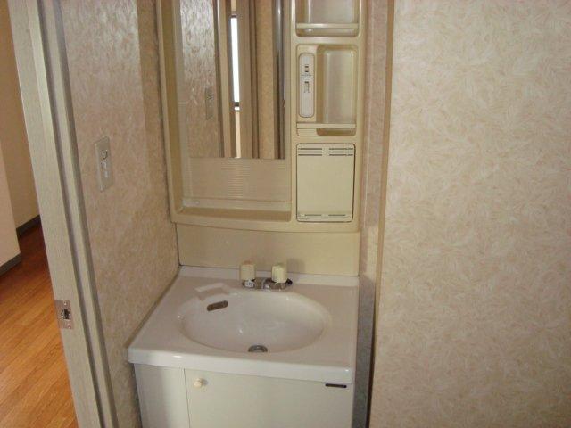 ラメゾンドゥソレイユ 101号室の洗面所