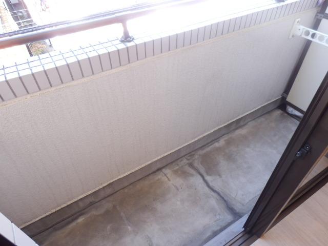 マンション関口 303号室のバルコニー