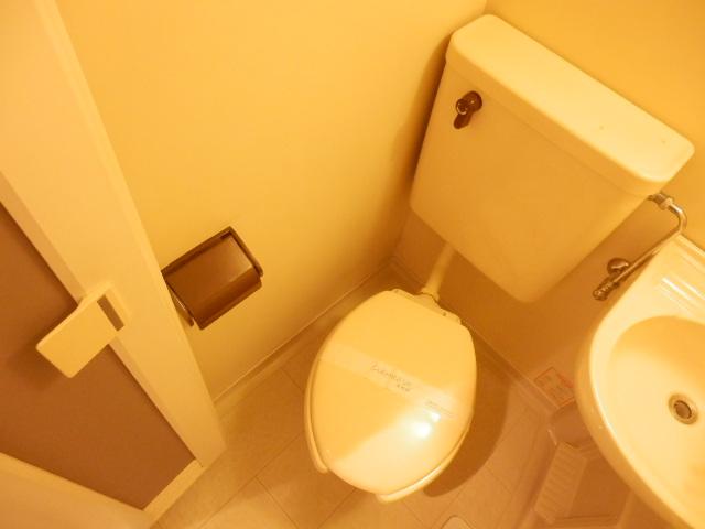 マンション関口 303号室のトイレ