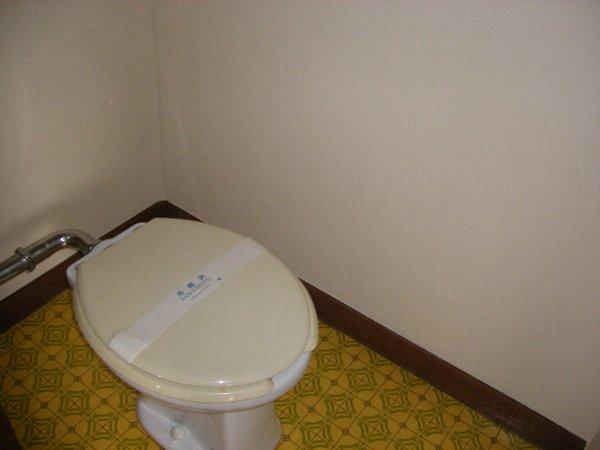 井上ハイツ 205号室のトイレ