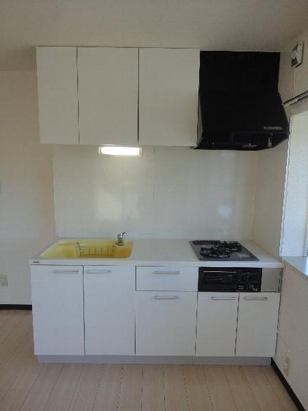 グランシャリオ 301号室のキッチン