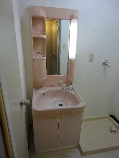 グランシャリオ 301号室の洗面所