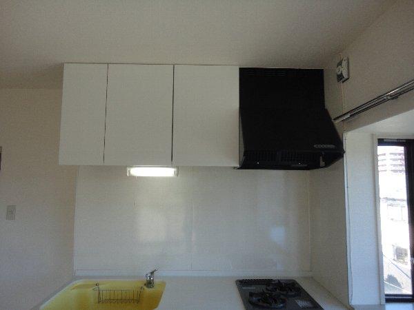 グランシャリオ 301号室の収納