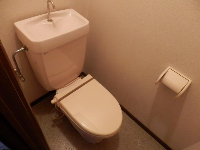 コンフォートYOU 201号室のトイレ
