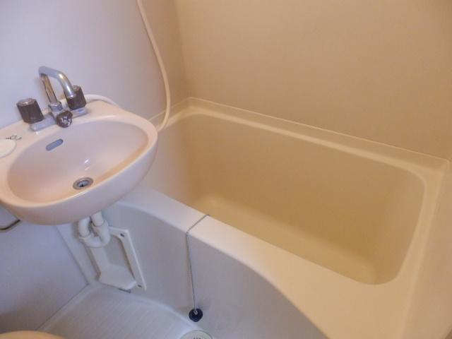 タウンハウス豊岡 105号室の洗面所