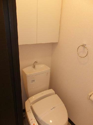 レオネクストウテナ 105号室のトイレ