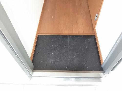 レオパレスエクセディオールⅡ 203号室の玄関