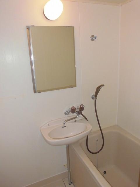 メゾンオザワ 01030号室の洗面所