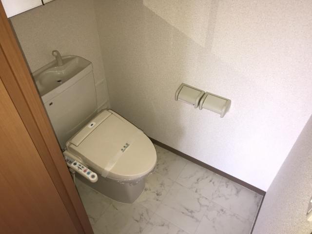 パルフェドルミナスⅢ 00201号室のトイレ