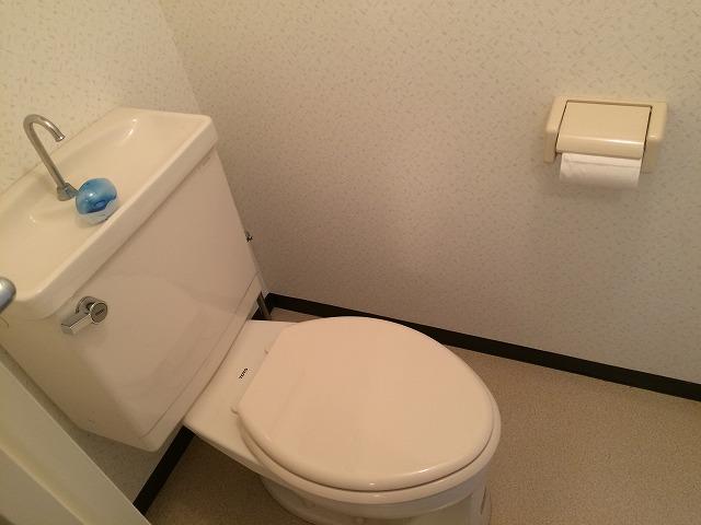 ダイアパレスステーションプラザ前橋 704号室のトイレ