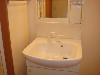 アルカディア 205号室の洗面所