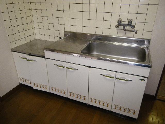 ロイヤルヴィレッジ 203号室のキッチン