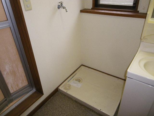 ロイヤルヴィレッジ 203号室の洗面所