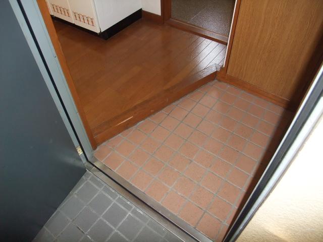 ロイヤルヴィレッジ 203号室の玄関