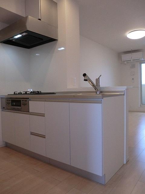 アリエッタ Ⅱ 02020号室のキッチン