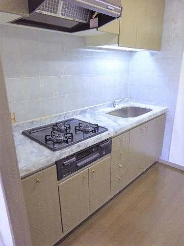 ライオンズマンション高崎 502号室のキッチン