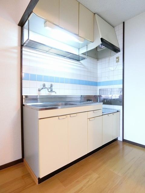 エルディム斉藤 02020号室のトイレ