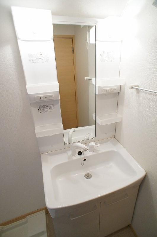 シェーネA 01010号室の洗面所