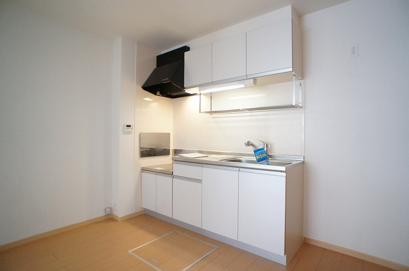 シェーネA 01010号室のキッチン