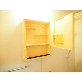 セイワハイム 201号室の洗面所