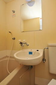 メゾン・ド・パルティ 0205号室の洗面所