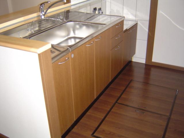 グラン・リーオ伏見 102号室のキッチン