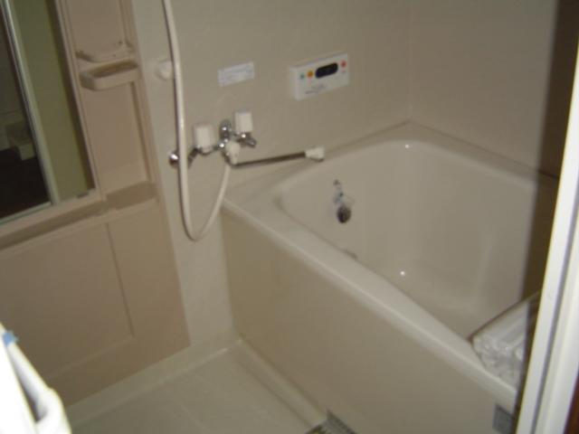 グラン・リーオ伏見 102号室の風呂