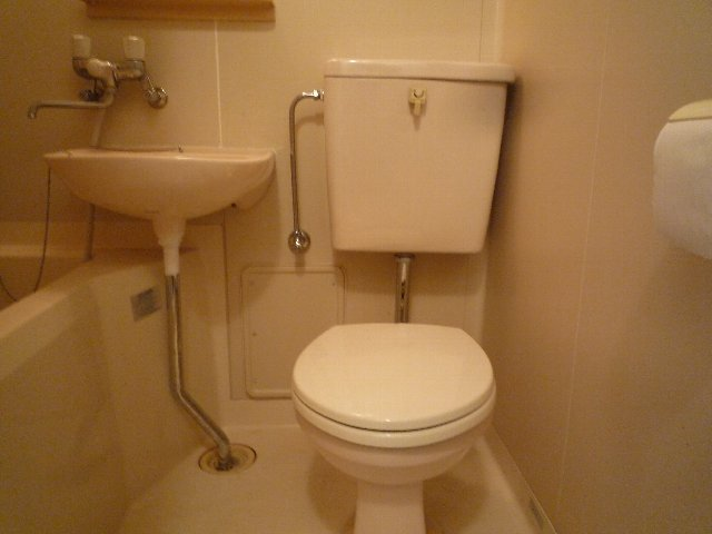 新美アパート 202号室のトイレ