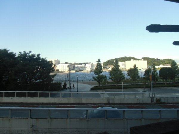 ガーベラマンション汐入 303号室の景色