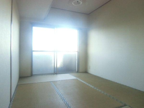 ガーベラマンション汐入 303号室の居室
