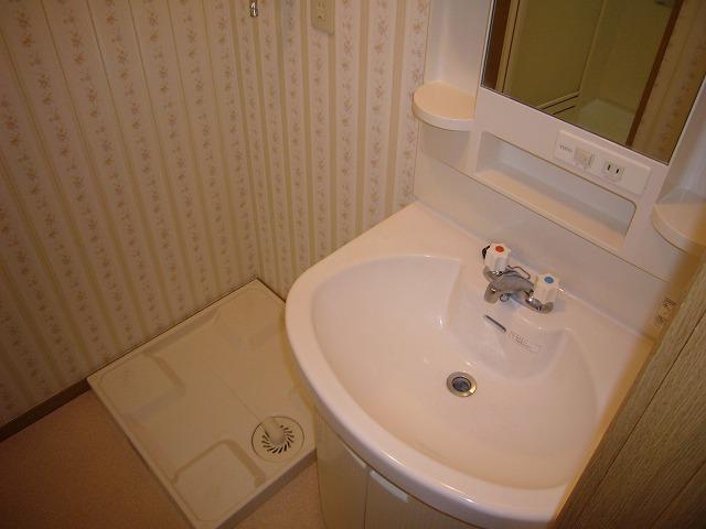 ライフモリ2号館 402号室の洗面所