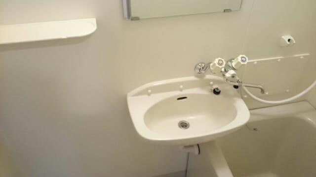 アーククロス 01030号室の洗面所
