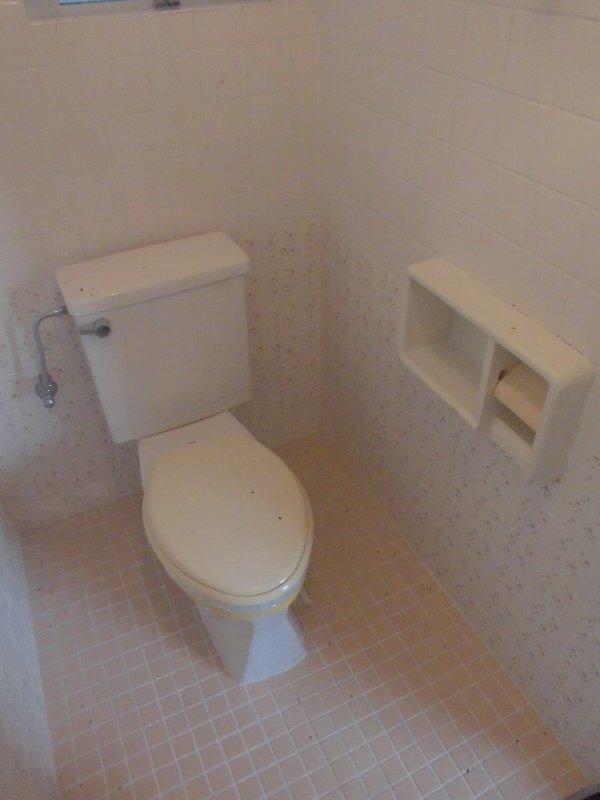 神元ビル 4-B号室のトイレ