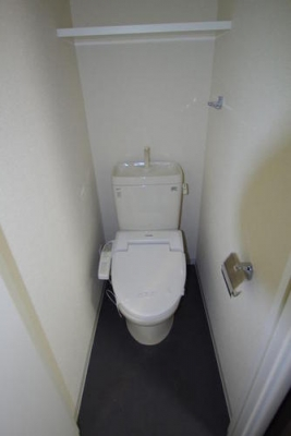 ブライズ東雪谷アジールコート 601号室のトイレ