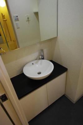 ブライズ東雪谷アジールコート 601号室の洗面所