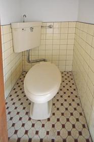 西友コーポD棟 205号室のトイレ