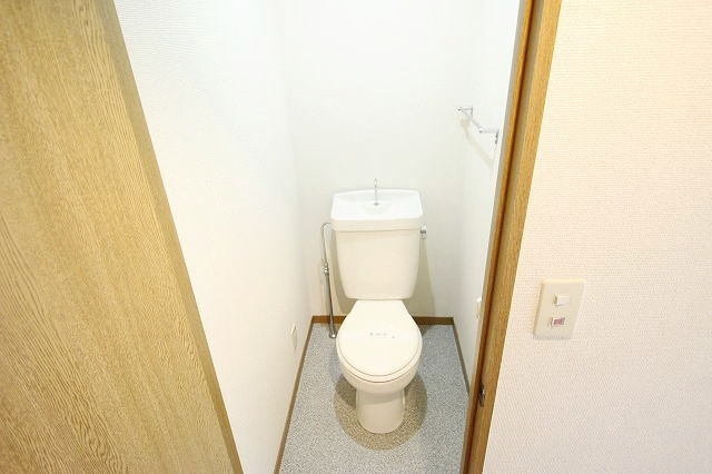 サニ-ヒル 03010号室の玄関
