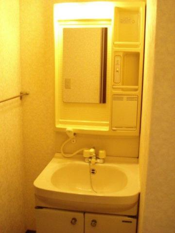SUE STATIONハイツ 201号室の洗面所