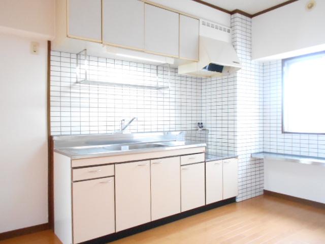 エクセルガーデン 206号室のキッチン
